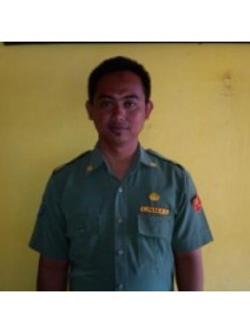 Hary Nur Syamsuddin, S.Pd.SD